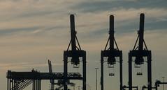 Port Newark 82 (stevensiegel260) Tags: portnewark shipping cranes port containerport containershipping newjersey