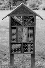 Bug House (Theunis Viljoen LRPS) Tags: zoo poland krakow bughouse
