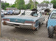 BEAT 1966 CHRYSLER 300 CONVERTIBLE (richie 59) Tags: city trees urban usa ny newyork car america fence us spring parkinglot unitedstates weekend antique antiquecar sunday ripped convertible midtown kingston faded chrome beat torn newyorkstate chrysler mopar 300 chainlinkfence oldcar taillights nys rustycar bluecar backend wornout nystate chrysler300 hudsonvalley kingstonny 2016 2door americancar fadedpaint ulstercounty twodoor smallcity uscar midhudsonvalley midhudson ulstercountyny chryslercorporation 1960scar 2010s oldchrysler oldconvertible americanconvertible chryslerconvertible 1966chrysler richie59 1966chrysler300 oldmopar midtownkingstonny rustychrysler midtownkingston may2016 may222016 1966chryslerconvertible
