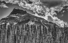 Pine Scented Mountain Air (FotoGrazio) Tags: trees sky blackandwhite mountain canada mountains art nature beautiful clouds composition contrast landscape freshair photography photoshoot scenic alberta rockymountains moment photographicart capture pinetrees digitalphotography travelphotography sandiegophotographer artofphotography flickrelite californiaphotographer internationalphotographers worldphotographer photographersinsandiego fotograzio photographersincalifornia waynegrazio waynesgrazio