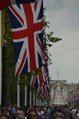 The Flags and Buckingham Palace (CoasterMadMatt) Tags: city colour london westminster mall jack flag union palace flags event buckinghampalace buckingham unionjack unionflag themall troopingthecolour trooping cityofwestminster london2016 troopingthecolour2016