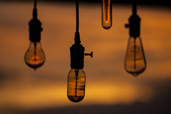 Glow (todd*) Tags: bokeh edisonbulbs light phoenix sunset