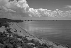 Lake Okeechobee #2 (PositiveAboutNegatives) Tags: rangefinder kievii contaxii kiev2 vintagecamera 50mm sonnar zeiss film analog fp4 ilford bw blackandwhitefilm clouds lakeokeechobee florida portmayaka