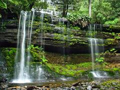 russell falls - tasmania, australia 3 (Russell Scott Images) Tags: australia tasmania russellfalls russellfallscreek centralhighlands waterfall rain forest