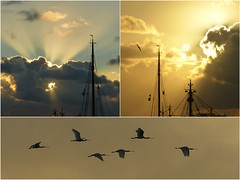 Harlingen, elke avond weer anders (cre8ive-M) Tags: harlingen harns friesland haven harbour zonsondergang sunset willemshaven willemskade pier waddenzee lepelaars