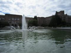 IMG_0311 (Sweet One) Tags: seattle usa uw washington universityofwashington