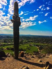 Charishing 24 hours off (Brian Just Got Back From...) Tags: phoenixaz arizona