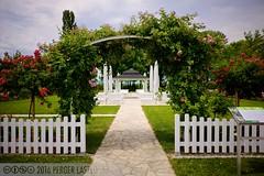 PLW_5593 (Laszlo Perger) Tags: wien vienna sterreich austria blumengarten hirschstetten flowergarden