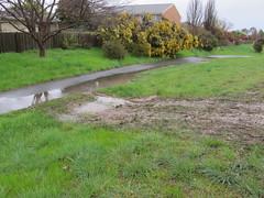 edge needs touching up (troggonk) Tags: ginnderra creek act sept 2016 ngunnawal gungahlin water erosion maintenance
