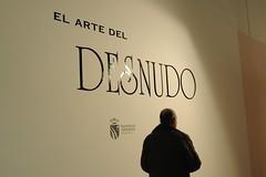 EL ARTE AL DESNUDO (1)