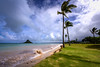 China man hat (Traylor Photography) Tags: park beach water hawaii waikiki tide chinamanshat kualoabeach