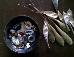 found (The Vintaquarian) Tags: nature found mementos collection pendulum gems pods smallthings scarab geodes naturecollection memborabilia thevintaquarian bowloffinds