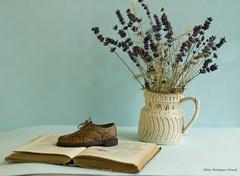 Mis pasiones (silrodral) Tags: stilllife flores azul libro zapatos lilas decoracin