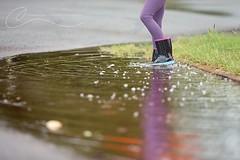 Polka dots (Channon Williamson Photography) Tags: reflection rain canon puddle polka rainy dots 70200 5dmk3