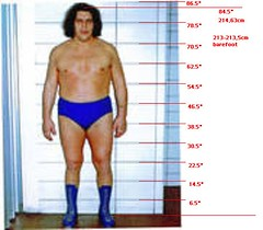 AndreinfrontofWall (andrethegiantrousimoff) Tags: show dan giant ed paul jones big kevin diesel nwo andre tall how nash andrethegiant hulkhogan comparison baba height nwa wwe wight wwf awa wcw measurements spivey wccw andrethegiantheightloss andrecomparison