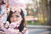 Beautiful like thousand blossoms (InsaneAnni) Tags: portrait germany cherry costume spring vietnamese dress traditional blossoms frühling chemnitz kostüm tracht kirschblüten เวียดนาม ผู้หญิง vietnamesin ฤดูใบไม้ผลิ คนเวียดนาม