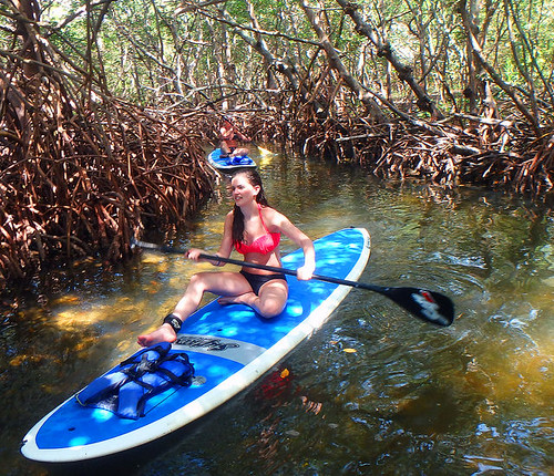 4-22-15-Norman-and-Family-lido-mangrove-tunnels 1