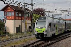 BLS Ltschbergbahn DOSTO - Doppelstockzug Ours RABe 515 013 mit Taufname Fribourg - Freiburg ( Mutz ) vom Typ KISS der Firma Stadler Rail am Bahnhof Kerzers im Kanton Freiburg der Schweiz (chrchr_75) Tags: chriguhurnibluemailch christoph hurni schweiz suisse switzerland svizzera suissa swiss chrchr chrchr75 chrigu chriguhurni april 2015 eisenbahn bahn train treno zug schweizer bahnen bahnhhof kerzers kantonfreiburg kantonfribourg stadler rail dosto doppelstockzug doppelstcker rabe 515 bls ltschbergbahn mutz albumzzz201504april albumbahnenderschweiz albumbahnenderschweiz201516 albumblsltschbergbahn juna zoug trainen tog tren  lokomotive  locomotora lok lokomotiv locomotief locomotiva locomotive railway rautatie chemin de fer ferrovia  spoorweg  centralstation ferroviaria