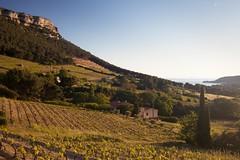 Sur la route d'un week-end de quatre jours (louPasc) Tags: canon voigtlander 40mm paysage vignes ultron 5d2