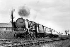 Leighton Buzzard 21.4.51 (robmcrorie) Tags: monochrome train rifle royal rail railway steam kings scot corps 1950s british buzzard leighton 1951 the 46140 21451