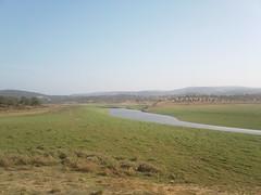 Los Plaitos, Sevilla. (angelmelendez3) Tags: naturaleza verde green nature sevilla seville plain cala rivera llanura clayey arcilloso