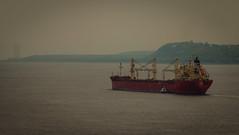 Pilot Exchange (langdon10) Tags: canada boats ship quebec harbour overcast nautical navigation pilot atsea departing stlawrenceriver cargoship canon70d pilotexchange
