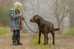 take the dog out (cb.photography) Tags: dog cute nature animal child sweet walk natur rope line kind hund leash wandern tier spaziergang leine ss takethedogout