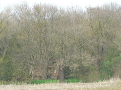 decay (achatphoenix) Tags: abandoned decay ostfriesland ems derelict riverems verfall eastfrisia deichverteidigungsstrase dykedefencepath