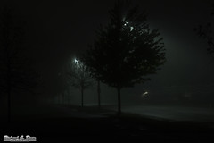 Oak Lawn, IL - Centennial Park - Foggy Evening (Rick Drew - 16 million views!) Tags: road park street trees light mist fog night dark evening centennial illinois il damp oaklawn
