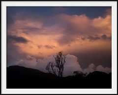 winter trees (Andrew C Wallace) Tags: trees winter sunset storm skyline australia victoria cloudscape tidalriver wilsonspromontory mountoberon olympusomdem5 olympus17mmf18