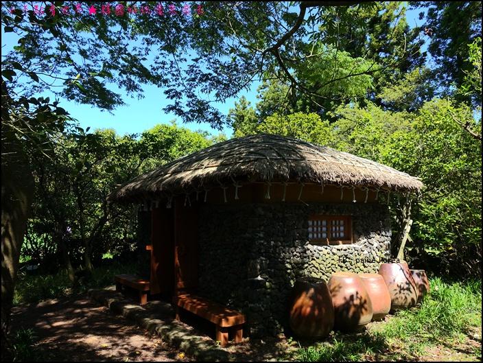 濟州山茶花庭院 (18).JPG