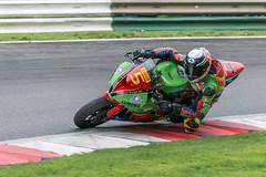 Aaron Clarke (david.chapman90) Tags: honda racing motorbike yamaha suzuki ducati kawasaki cadwell superbikes