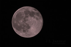 Strawberry Moon - 06.20.16 (J.L. Ramsaur Photography) Tags: nightphotography moon photography photo nikon tennessee pic fullmoon nighttime photograph thesouth atnight afterdark moonshot cumberlandplateau summersolstice tropicofcancer cookeville 2016 strawberrymoon putnamcounty cookevilletn skyabove middletennessee onceinalifetimeevent junesolstice cookevilletennessee ibeauty lunarshot northernsolstice mooninshot tennesseephotographer southernphotography screamofthephotographer jlrphotography photographyforgod d7200 engineerswithcameras jlramsaurphotography nikond7200 cookevegas