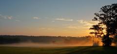 Morning mist (readerwalker) Tags: mist sunrise earlymorning tallahassee readerwalker sonya6000