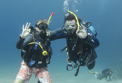 2510 Andrew Searle (KnyazevDA) Tags: sea underwater wheelchair scuba diving disabled diver padi undersea handicapped amputee disability