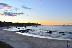 CSC_0166 (JP98AUS) Tags: beach scenery nsw water sunset