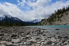 DSC_0020 (J F Wolford) Tags: canada river landscape alberta banffnationalpark
