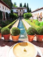 Alhambra Palace - Granada/Spain (Amberinsea Photography) Tags: fountain beautiful architecture garden amazing spain awesome palace alhambra moorish granada andalusia amberinseaphotography