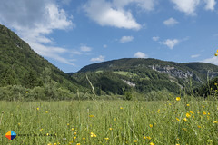 Along the River Trail in Mellau (HendrikMorkel) Tags: austria sterreich vorarlberg bregenzerwald sonyrx100iv
