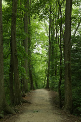 2016 Delaware Forestry Career Development Event-4 (agriculturede) Tags: trees green forestry trail brecknockpark delawareforestrycareerdevelopmentevent