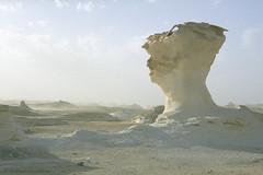 White Desert, Egypt (Svetlana Polukhina) Tags: desert egypt white sahara     film analog 35mm   libiandesert  fuji reala