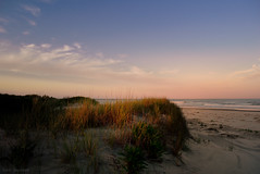 last light (tom bourdot) Tags: light sunset cloud beach nature clouds landscape outside seaside dusk dune nj july gimp bluesky shore serene nikkor atlanticocean magichour refuge lastlight twomilebeach capturenx2 nikond3300
