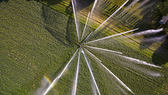 Water Wheel (milfodd) Tags: field photoshop farm july sprinkler blended aerialphotography stacked irrigation drone 2016 watercanon dji 9images quadcopter phantom3pro