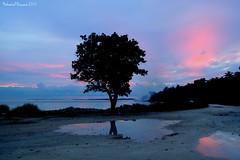 Reflection (hassaan 2015) Tags: maldives mohamed dhivehi hassaan raajje hinmafushi