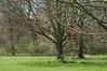 Highlands Park (Ian Gould Photo) Tags: d90nikon