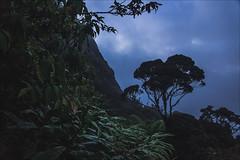 Adams Peak (see1st) Tags: trip travel winter sunset sky india mountains clouds nikon nikond50 srilanka adventures adamspeak nuwaraeliya