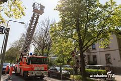 Brand Behindertenwohnheim Mainzer Str. 23.04.15 (Wiesbaden112.de) Tags: wiesbaden nef brand feuer feuerwehr rtw lna einsatz evim atemschutz rauchmelder mainzerstr olrd