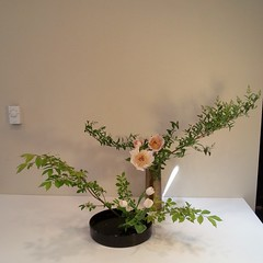 Mrunmayi's #ikebana