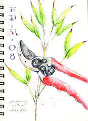 EDM Every Day in May #8 (Sherry Schmidt) Tags: red art pencil garden watercolor painting sketch gardening sketchbook bamboo watercolour