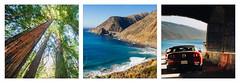 Roadtriptych - Book 2 - V - Big Sur / Monterey (ḆΞ₪¡) Tags: ocean california road trip trees usa canon pacific bigsur roadtrip sequoia 30d 2013
